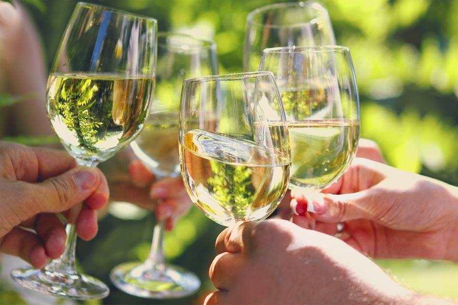 enjoy a Berkshires wine tasting vacation