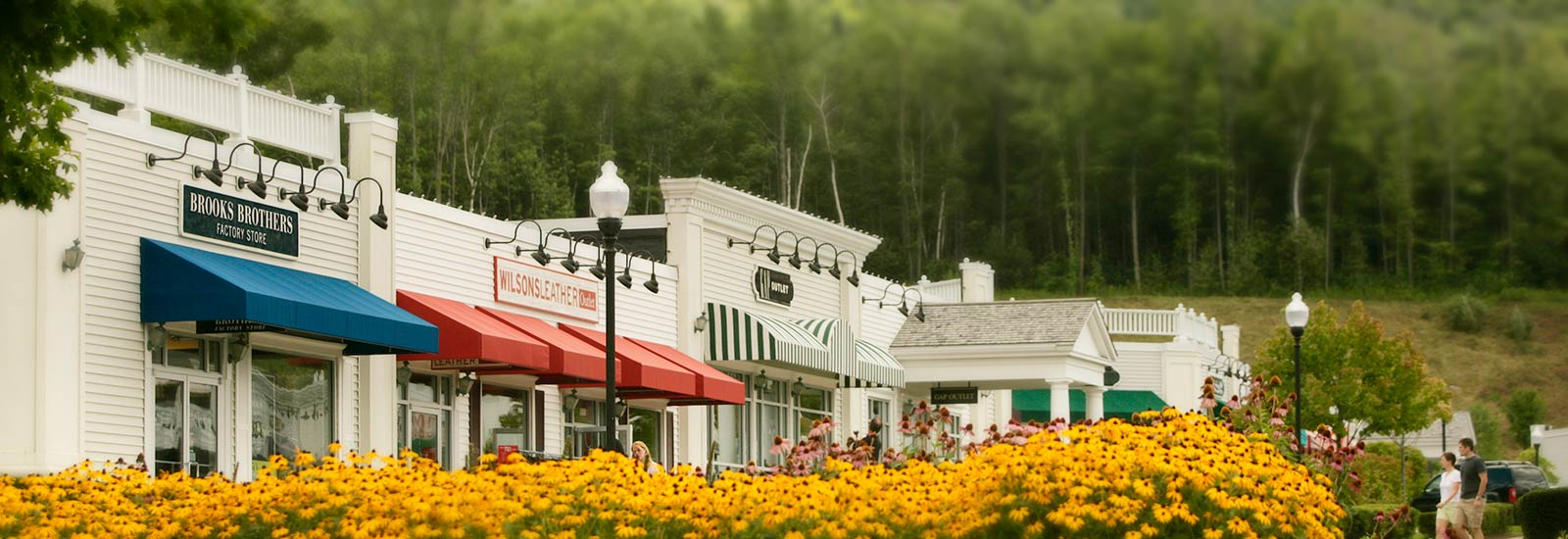 Storefronts and yellow flowers