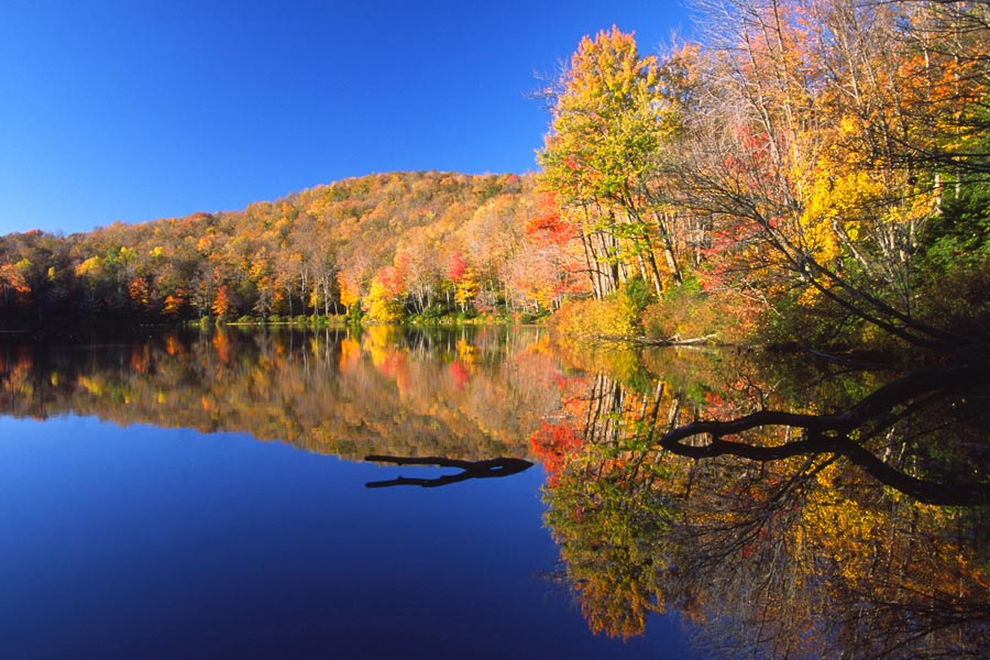 Berkshires Fall Foliage reflections on a pond