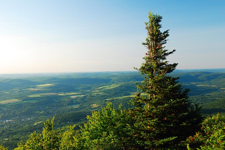 a view from Mount Greylock summit