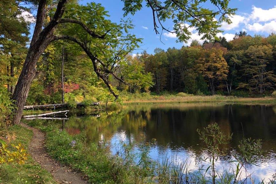 beaver pond at Pleasant Valley Wildlife Sanctuary