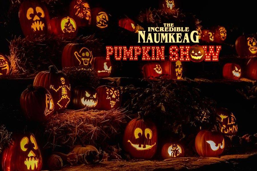 Incredible Naumkeag Pumpkin Show 2021